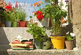 how to spray paint plastic plant pots