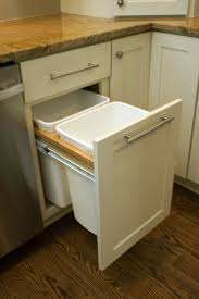 Inside Kitchen Cabinet Storage 35 Best Images About Storage Solutions By Cliqstudios On Pinterest