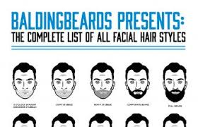 Mustache Styles Chart 68 Facial Hair Styles For Men Infographic Samples