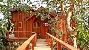 treehouse masters. Treehouse Masters Cost Of A Tree House