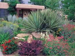 dr smith who autd this southwest yard garden column for 22 years has a new blog check it out southwest garden smith i ve especially enjoyed his