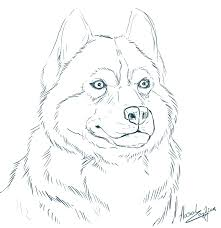 Free Colouring Pages Husky Coloring Pages At Property Free