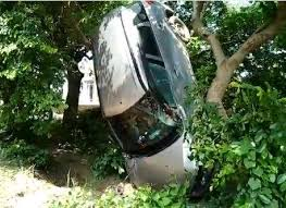 Car goes airborne after an accident in UP's Gonda, gets stuck on a tree |  Watch Video | India News – India TV