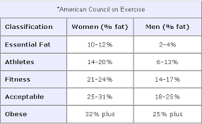 Army Body Fat Calculator My Dream Shape
