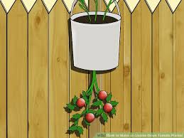 image titled make an upside down tomato planter step 8