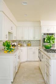 white kitchen cabinets with tile floor 9 winsome design quartz countertops transitional tobi fairley