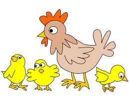 Bildresultat för tecknad kyckling