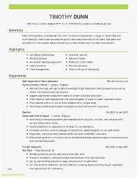 Sales Resumes Examples New Resume Best Standard Resume Templates