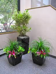 interior landscaping office. The Plant Lady, Inc. Designs And Cares For Numerous Interior Landscapes All Over Northern Michigan \u2013 Including Traverse City, Petoskey, Gaylord. Landscaping Office