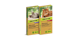 Drontal Feline Dosage Chart Drontal For Cats And Kittens Quick Reliable Worm Treatment