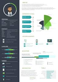Infographic Resume Template Best Resume Ideas Images On Resume