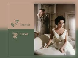 cat on a hot tin roof essay cat on a hot tin roof book