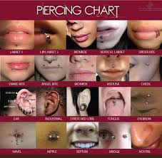 Piercing Chart Heres Your Ultimate Guide When It Comes To Piercing Charts