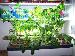 indoor vertical herb garden indoor hanging herb garden diy indoor
