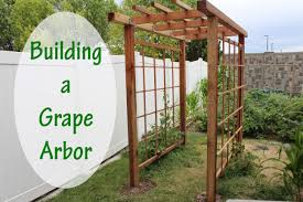 Grape Arbor Plans Best solutions Of Grape Trellis Ideas