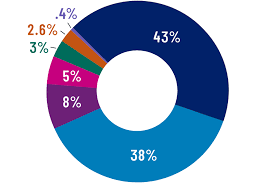 Pie Chart Of College Majors After Graduation Emory University Atlanta Ga