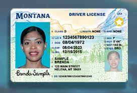 real id compliant identification to fly