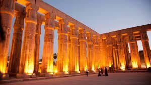 جاب المياه واليابسة.. اكتشاف حوت برمائي عاش في مصر قبل 43 مليون عام - CNN  Arabic