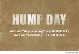 Happy Hump Day Quotes Fascinating 48 Wednesday Memes Funny Hump Day Memes With Quotes 48