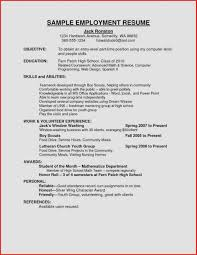 Dream Resume Examples Resume Examples for Jobs Fresh Sample Curriculum Vitae for 39