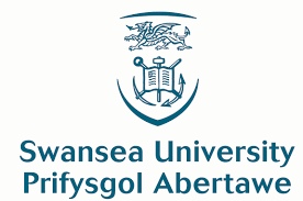 Image result for university swansea