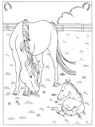 Goed Kleurplaten Paarden En Veulens Kleurplaat 2019