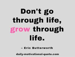Daily Motivational Quotes Adorable Free Daily Quotes Mesmerizing Daily Motivational Momentdrbryan