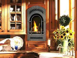 small see through gas fireplace fireplaces inserts insert enviro reviews