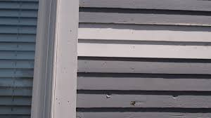 wood siding repair. Best How To Repair Historic Siding Pics For Wood And Cedar Tacoma Style P