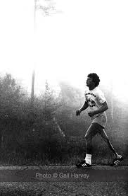 best terry fox images fox foxes and terry o quinn terry fox and darrell fox terry fox gallery gailharvey ca