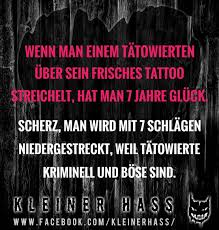 Kleiner Hass At Kleinerhass Instagram Profile Picdeer