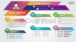 Modern Resume Infographics Stock Vector Portfolio Resume Infographics Profile Present Template Modern Design With Icons User Interface Kit For Business Presentations And