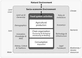 Sustainability Free Full Text Potentials And Limitations