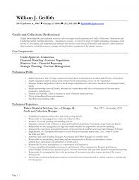 Insurance Agent Resume Objective Examples Examples Of Resumes