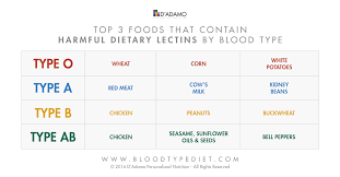 Blood Type Diet Chart Blood Type Diet And Exercise Back To Balance