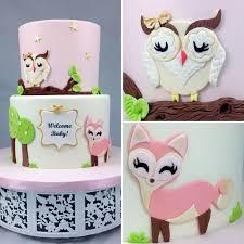 Christmas Baby  Huggies Birthday Cake Gallery  HuggiesOwl Baby Shower Cakes For A Girl