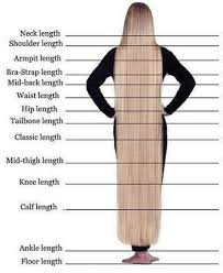 Braid Length Chart Pricing Booking