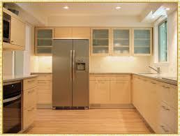Bamboo Cabinets Kitchen Bamboo Kitchen Cabinet Handles Tags Elegant Bamboo Kitchen