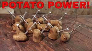 Potato Powered Light Bulb Project Potato Light Bulb Experiment For Kids