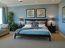 Plain Traditional Blue Bedroom Ideas With Dark Wood Furniture And Houseplants For
