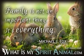 Rabbit Quotes Sayings Animal Quotes Sayings
