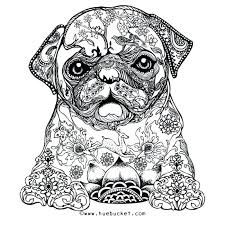 Dog Coloring Sheets For Adults Free Printable Coloring Pages For