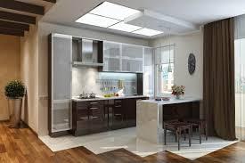 modern metal frame glass kitchen doors