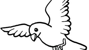 Birds Printable Coloring Pages Betterfor