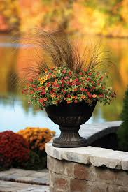 703 Best Container Gardening Ideas Images On Pinterest  Pots Container Garden Ideas For Fall