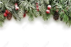 Pine Branches For Decoration Snow Covered Christmas Tree Branches Background Stock Photo