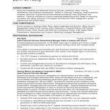 Resume Professional Summary Examples Customer Service Customer service plan examples of resumes resume professional 10