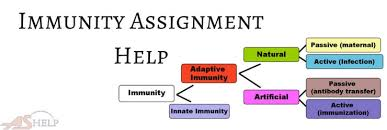 immunity assignment help biology assignment help immunity assignment help