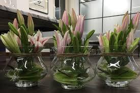 Office Flower Flower Arrangements Designer Plants Office Plants London