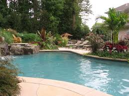 Small Picture Swimming Pool Landscape Design Of nifty Pool Landscaping Designs